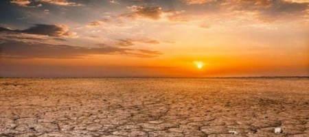Изменение климата влияет на качество почвы на Земле